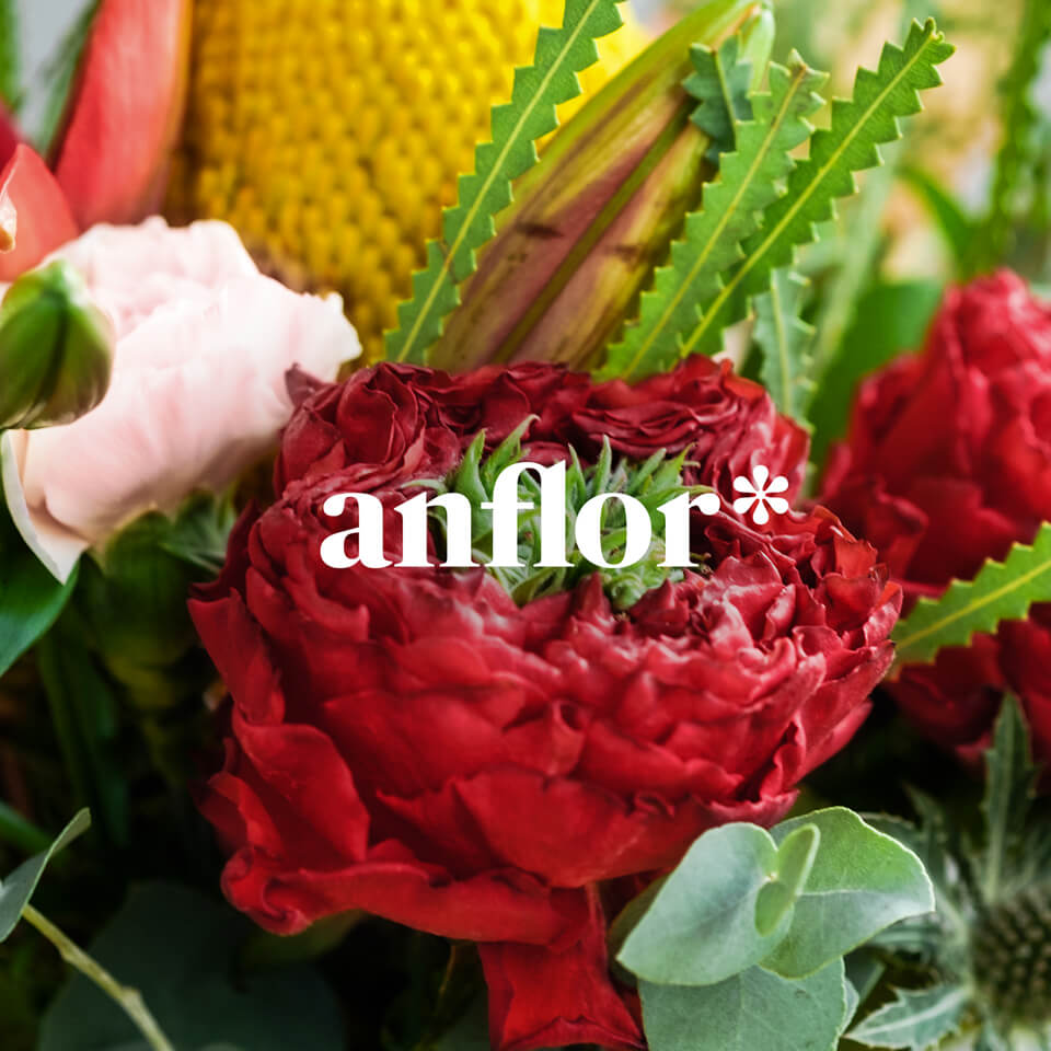 ANFLOR